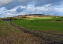 Barn - Aldbury Road.jpg